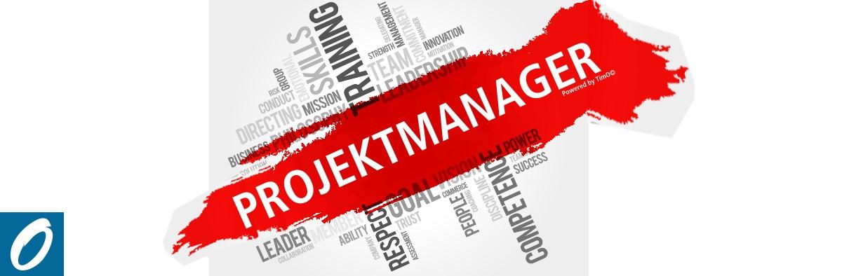 Die Rolle eines Projektmanagers im Projektmanagement - Der Allrounder