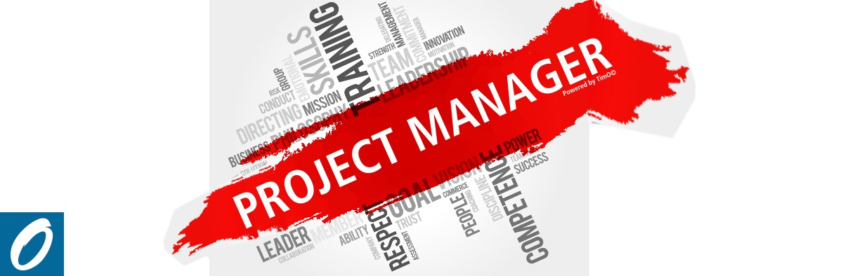 role of project manager in project management pdf